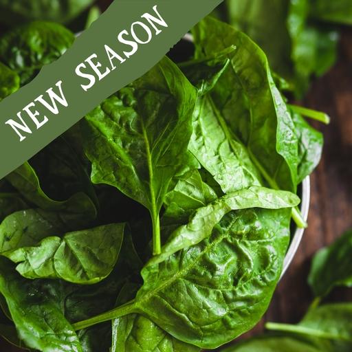 True spinach 250g