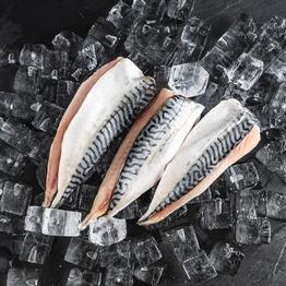 Wild Mackerel Fillets