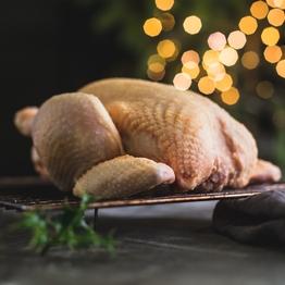 Chicken XXL 2.5kg