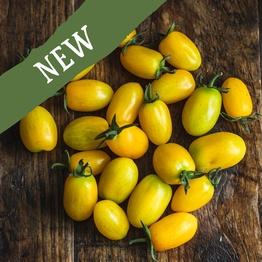 Yellow baby plum tomatoes 250g