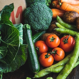 Zero packaging organic veg box - small